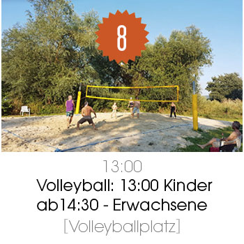 8_Volleyball